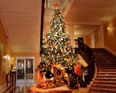 Рождественская ель от Dolce&Gabbana-430x480