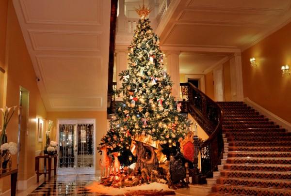 Рождественская ель от Dolce&Gabbana-320x180