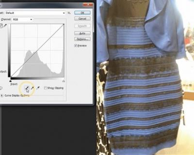 Сложный вопрос: какого цвета платье #TheDress?-430x480