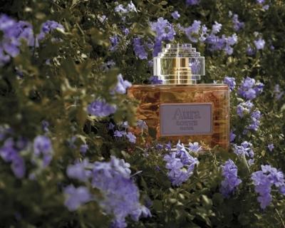 Новинка дня: аромат Aura Loewe Floral-430x480