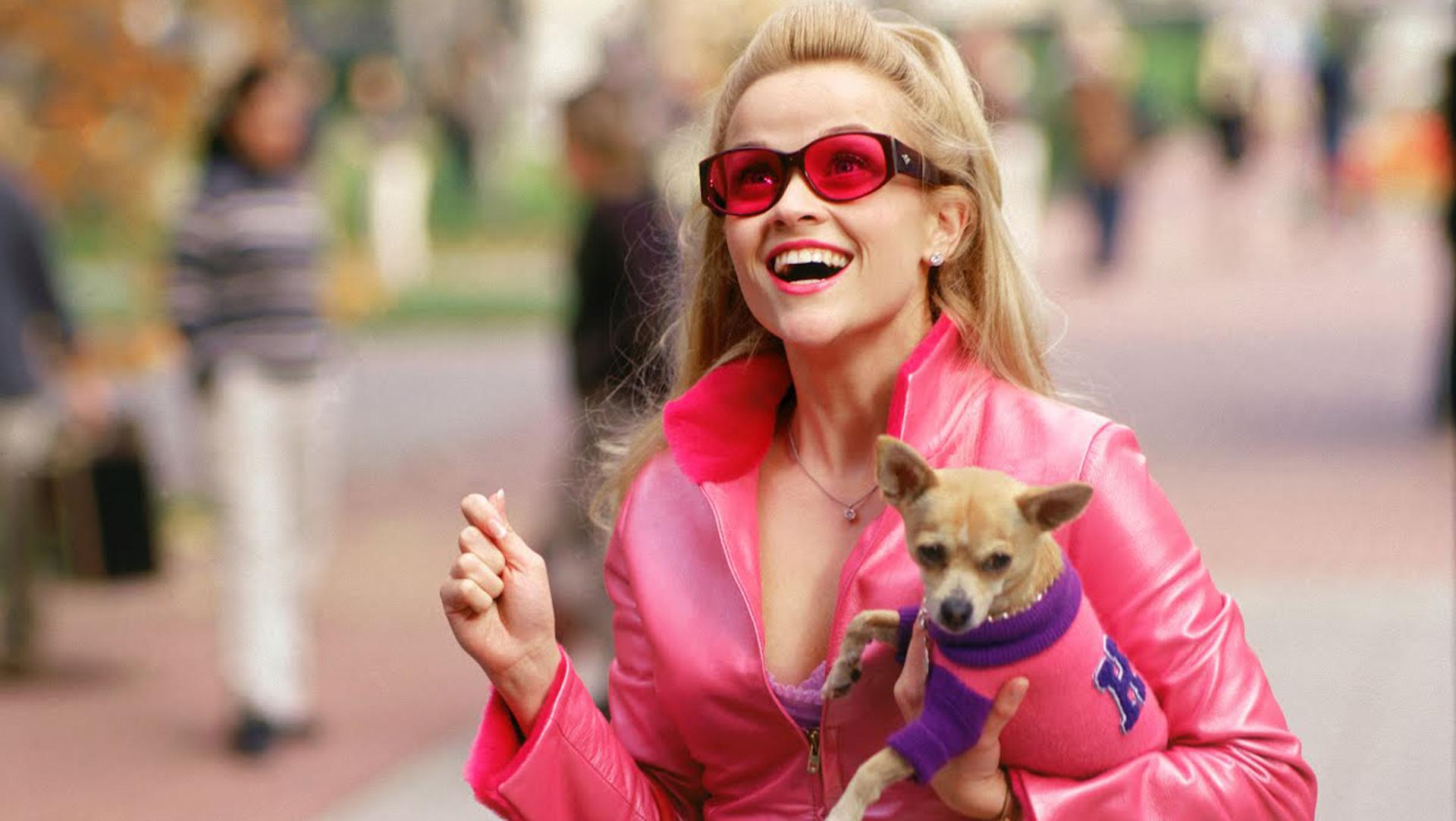 Прикольные картинки женщина с собакой, открытка состав открытка
