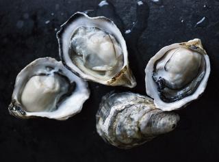У самого синего моря: 5 горячих трендов рыбной кухни