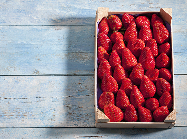 Fresh strawberries in wooden box on blue wood