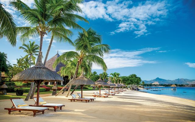 Макет рая: путешествие на остров Маврикий-320x180