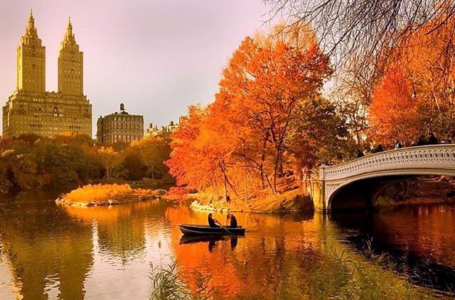"""Кадр из фильма """"Осень в Нью-Йорке"""""""