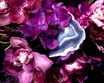 Nature morte: Fiori представили новую цветочную коллекцию-430x480