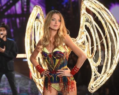 Кто выступит на Victoria's Secret Fashion Show в этом году-430x480