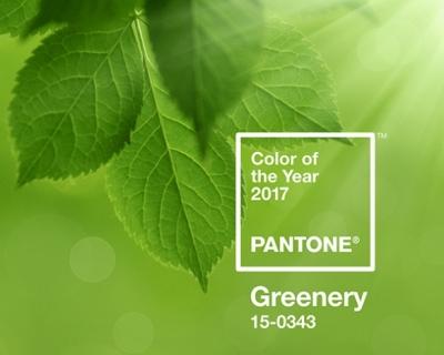 Институт Pantone назвал главный цвет 2017 года-430x480