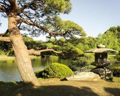 Моя Япония: места силы-430x480