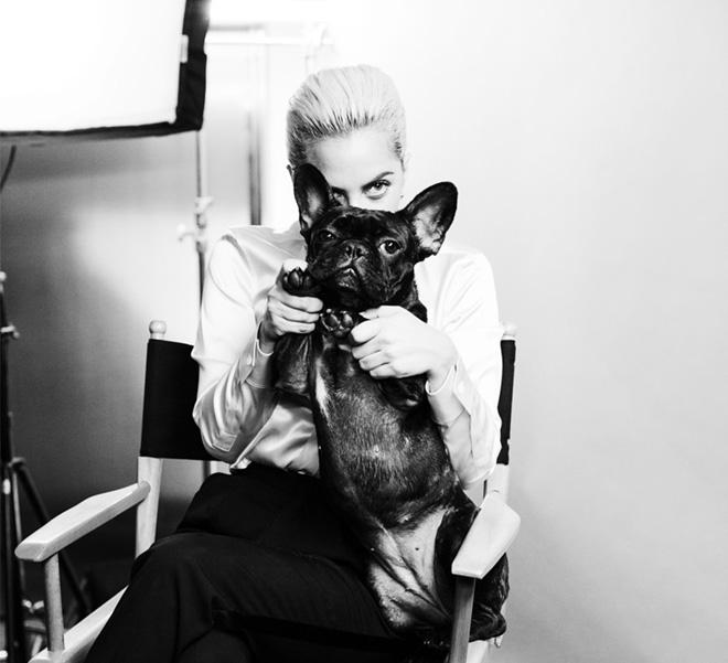 Леди Гага — новое лицо Tiffany & Co.-320x180