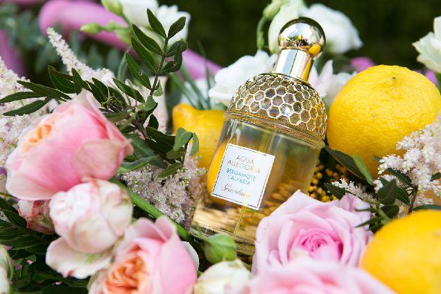 Выбор редакции: новый аромат в линии Guerlain Aqua Allegoria-320x180