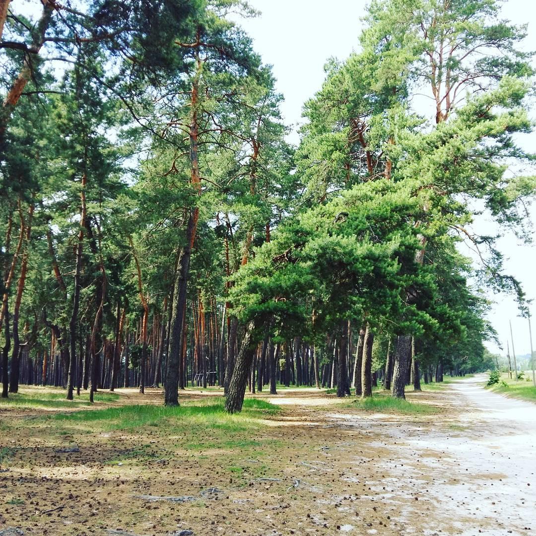 природа Украины
