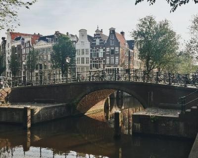 Бесплатный Амстердам: Город с крыш, розовые фламинго и дегустация сыров-430x480