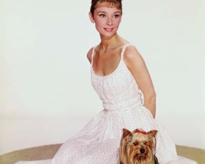 Вещи Одри Хепберн продадут на аукционе-430x480