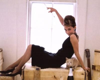 Дом Одри Хепберн уйдет с молотка за 14 миллионов долларов-430x480