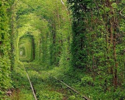 10 природных чудес Украины, которые стоит увидеть каждому-430x480
