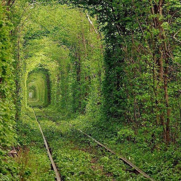 10 природных чудес Украины, которые стоит увидеть каждому-320x180