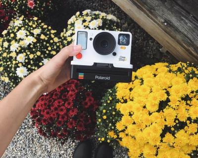 Возвращение легенды: Фотоаппарат Polaroid 1970-х снова поступит в продажу-430x480