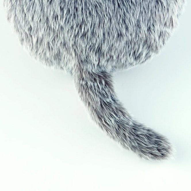 Подушка, которая заменит кота-320x180