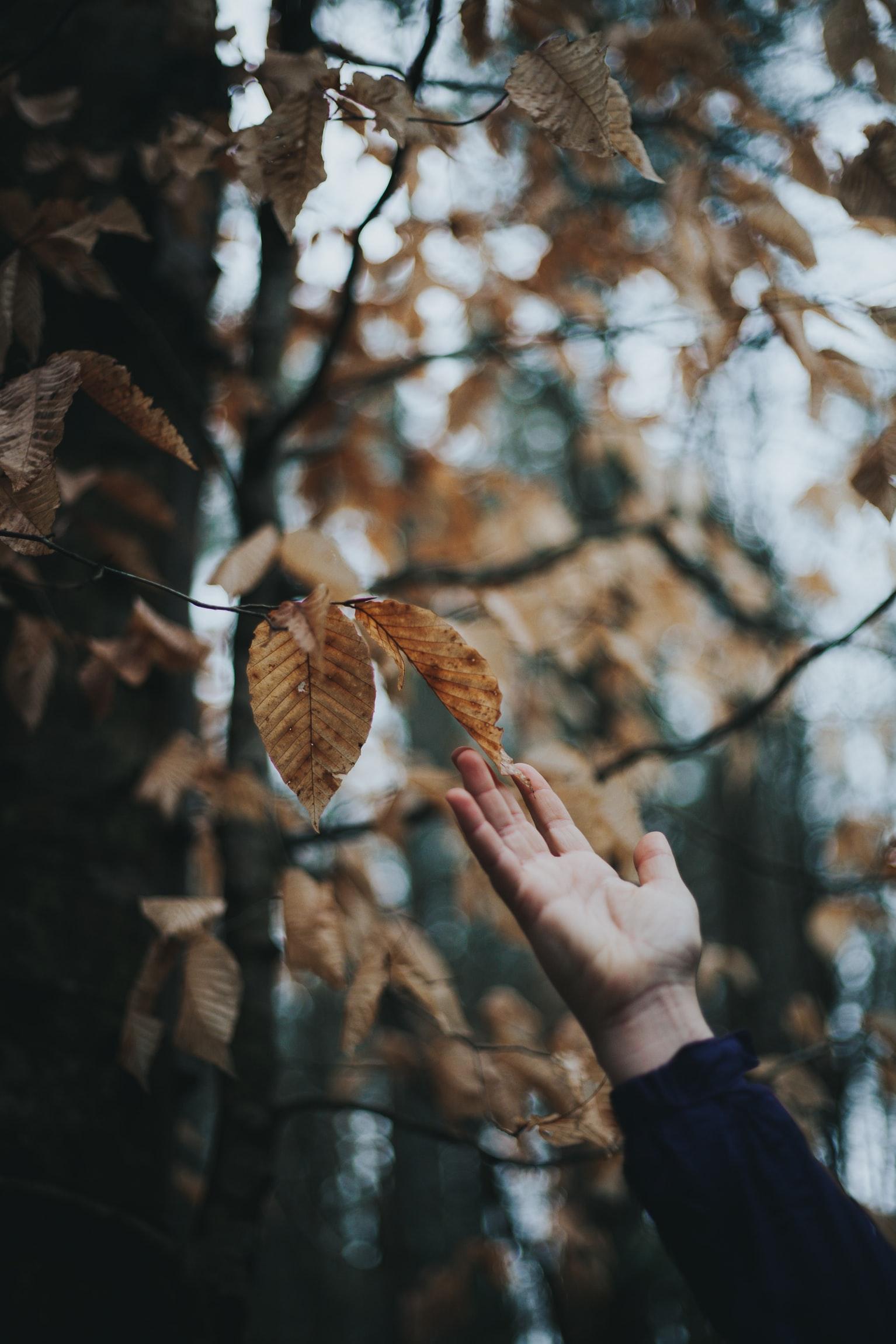 8 причин полюбить осень-Фото 5