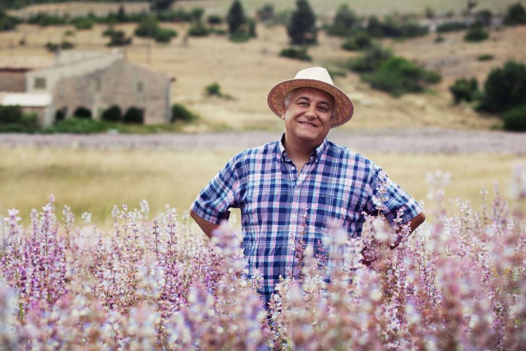 Вести с полей: как выращивают лаванду в Провансе-Фото 3