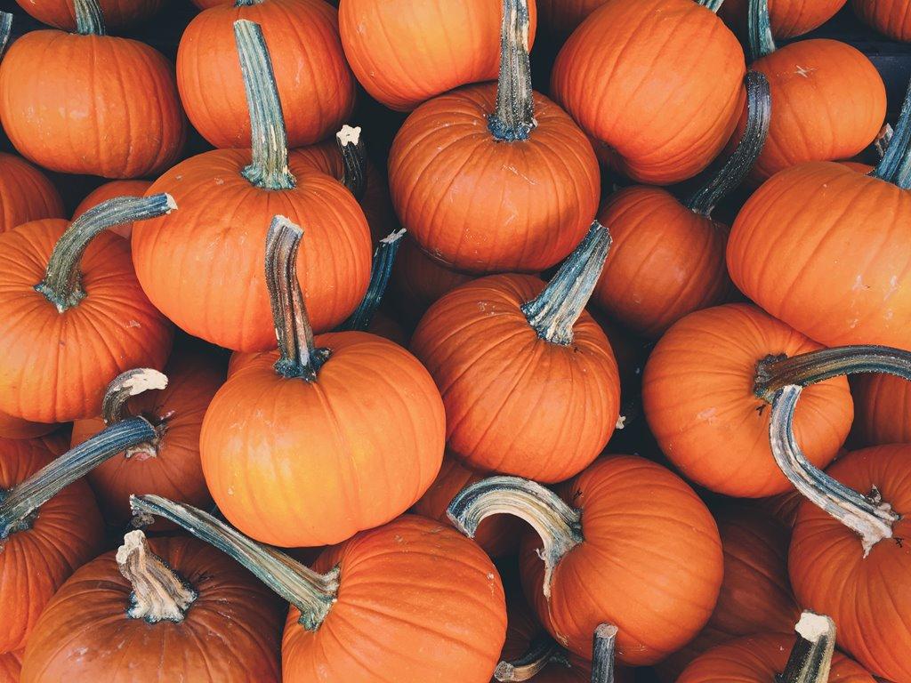 Плейлист на Хэллоуин-320x180
