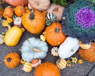 Полезные продукты, которые стоит есть осенью-430x480