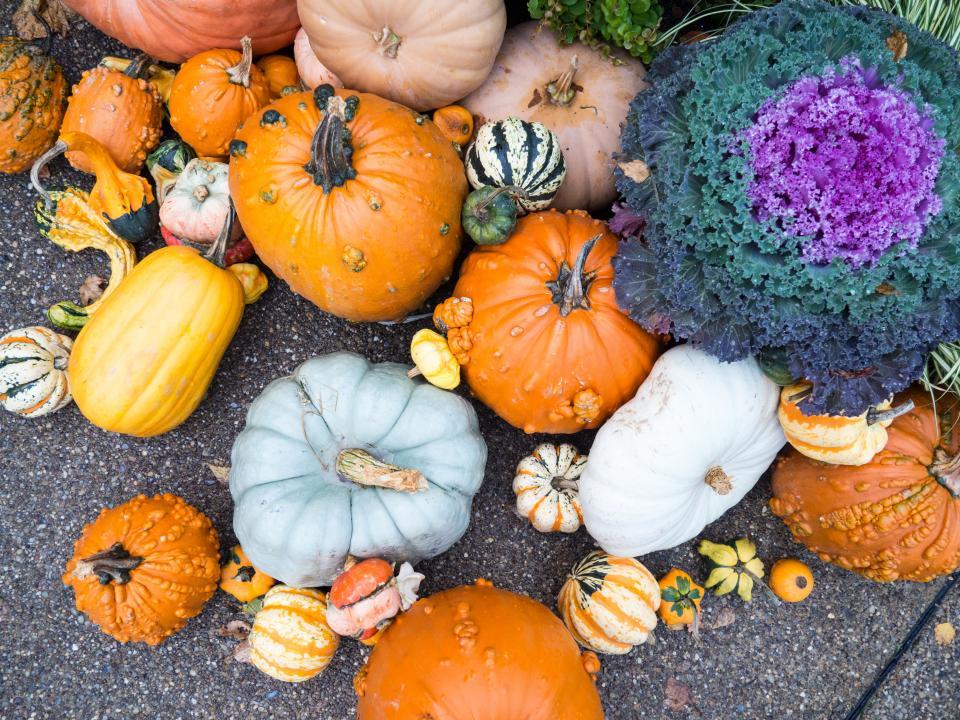 Полезные продукты, которые стоит есть осенью-Фото 1