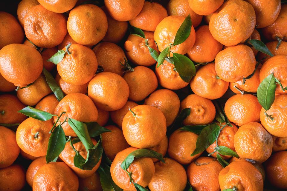 6 полезных продуктов, которые помогут укрепить здоровье-Фото 2