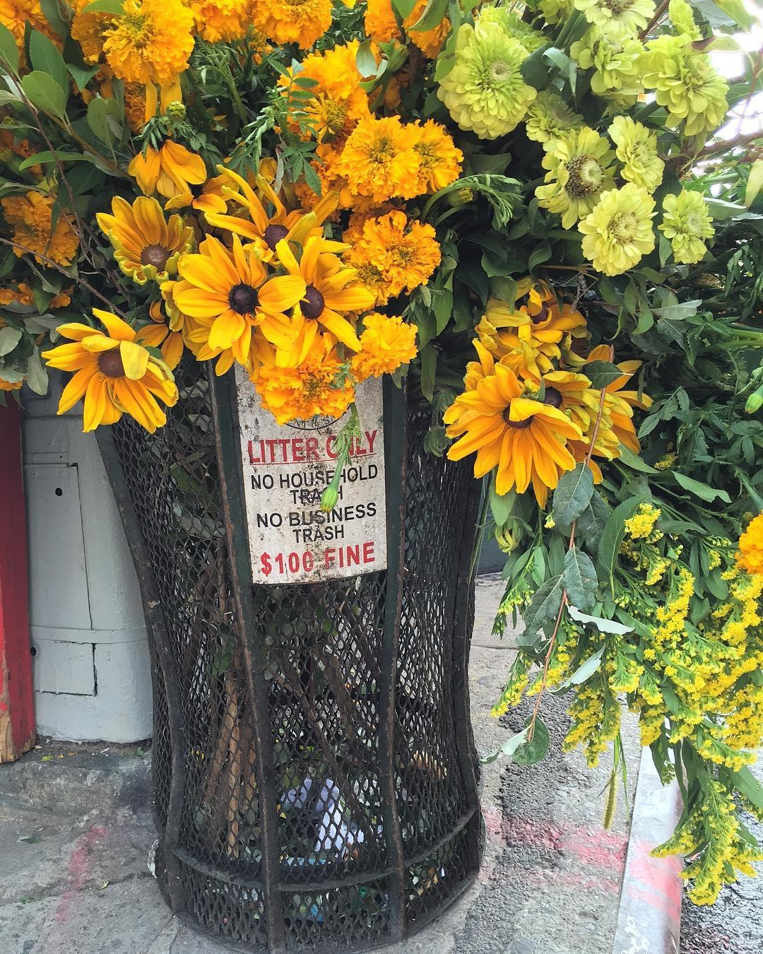 Фотоотчет: нью-йоркский флорист украсил улицы города-Фото 3
