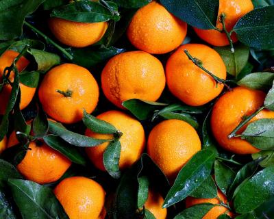 8 зимних фруктов для укрепления иммунитета-430x480