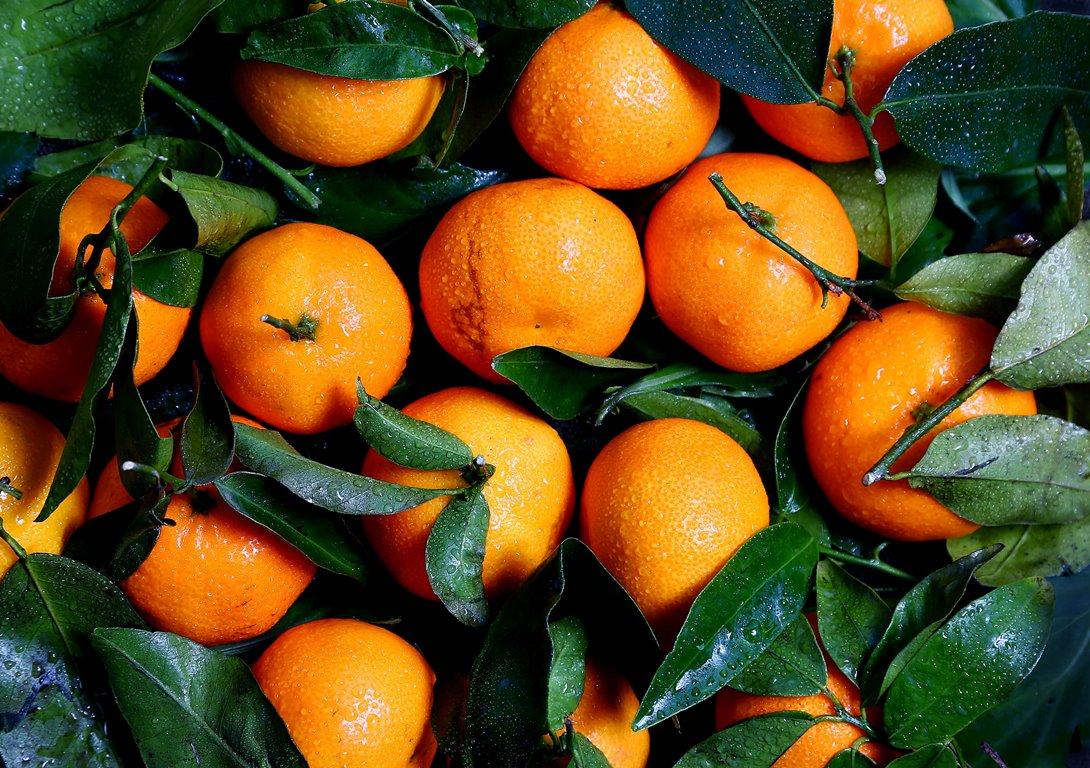 8 зимних фруктов для укрепления иммунитета-Фото 2