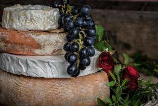 Полезные свойства сыра, о которых вы могли не знать