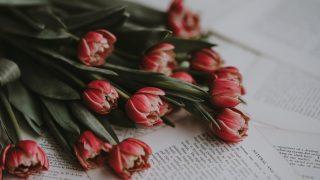 Книжные Instagram-аккаунты, на которые стоит подписаться-320x180