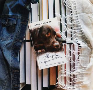 Лучшие книги о собаках