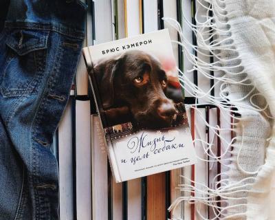 Лучшие книги о собаках-430x480