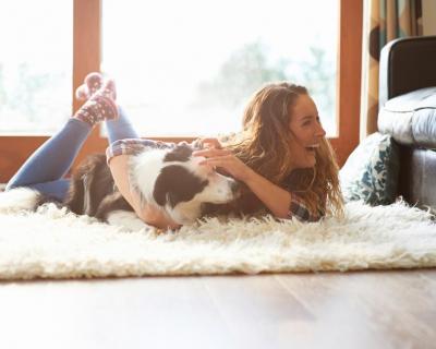 Домашние животные улучшают психическое здоровье-430x480