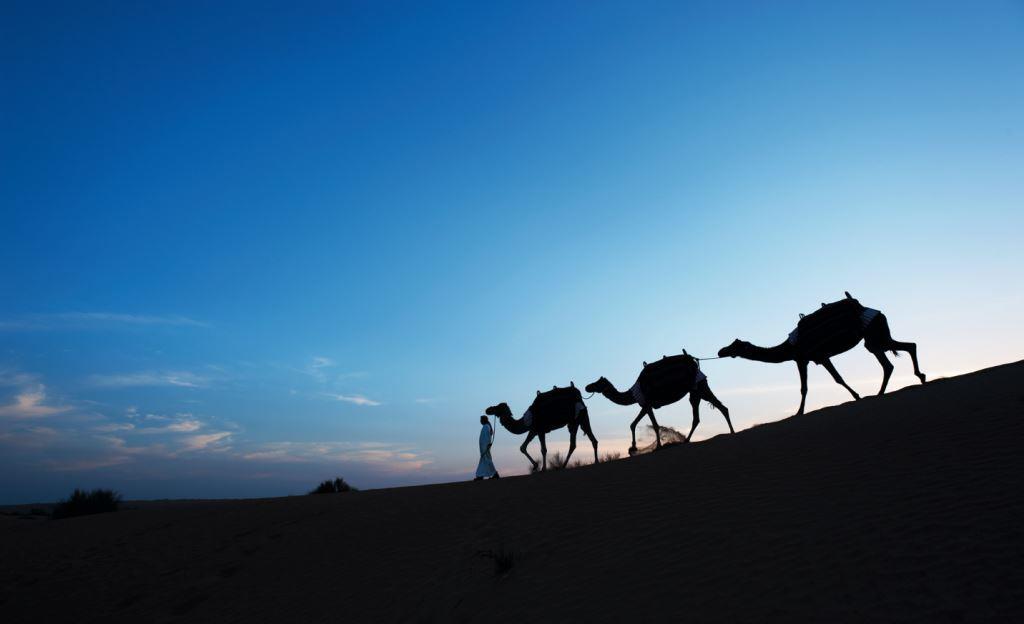 Романтический отдых в Дубае-Фото 4