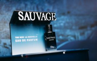 Как прошла презентация аромата Dior Sauvage Eau De Parfum
