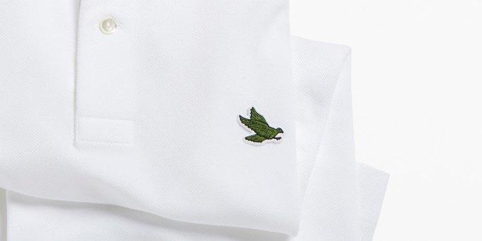 Lacoste логотип фото