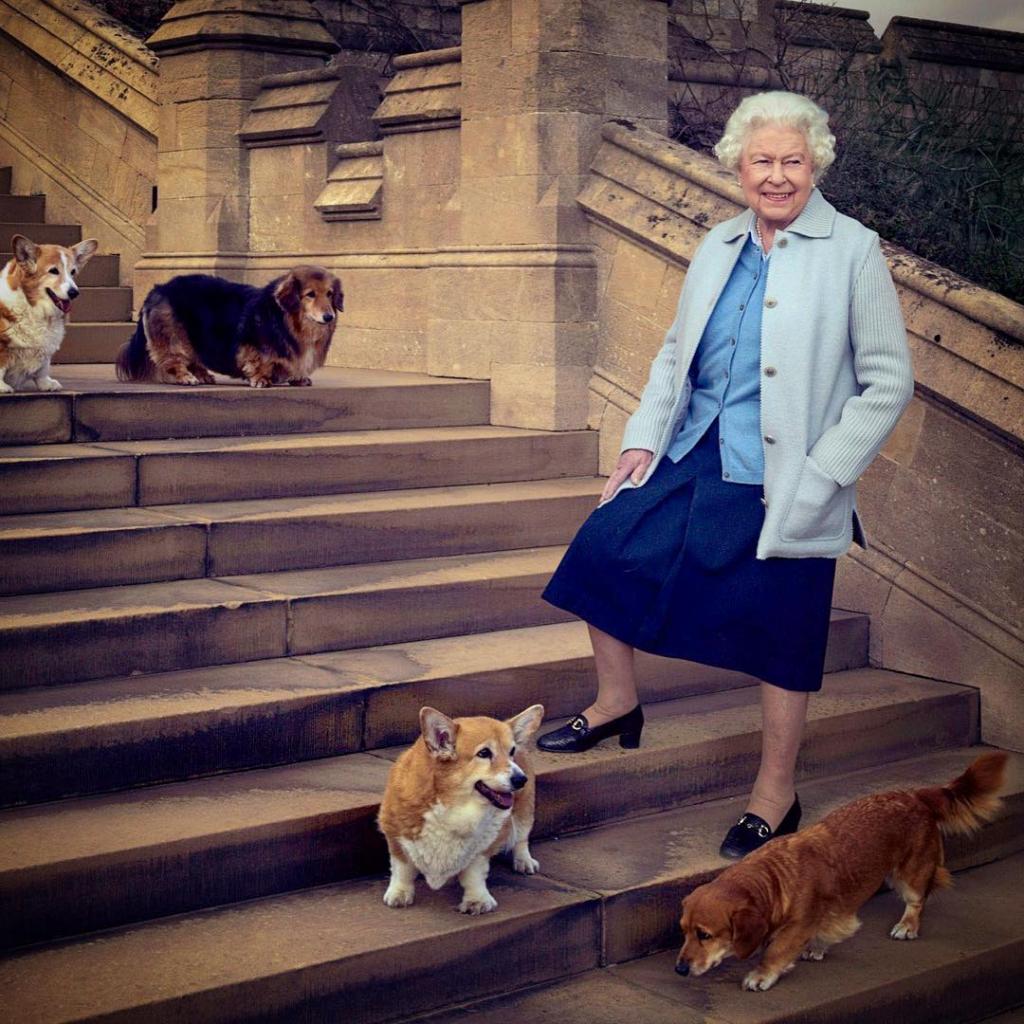 Елизавета II собаки