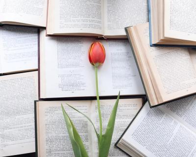 Апрельское чтиво: открываем новых авторов и наслаждаемся весной-430x480