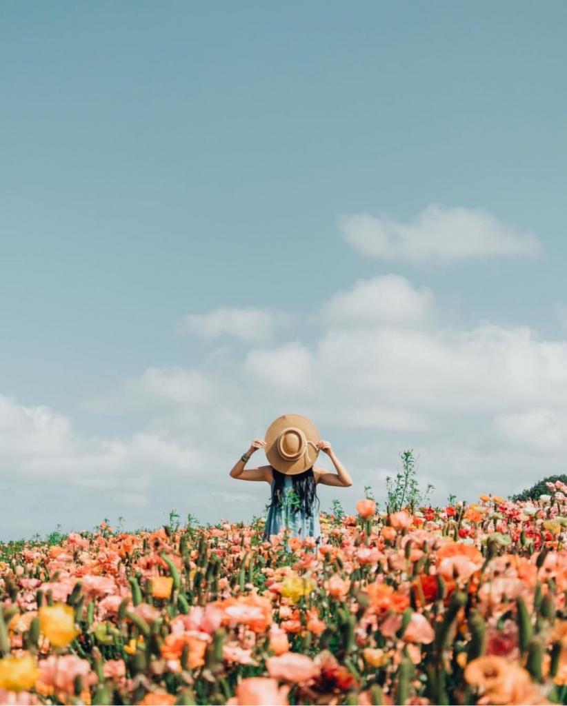 майские в украине