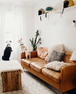 Ошибки в интерьере, которые «дешевят» ваш дом