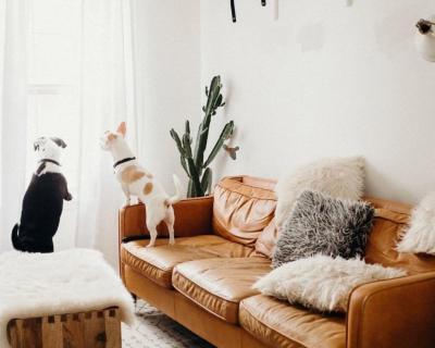 Ошибки в интерьере, которые «дешевят» ваш дом-430x480