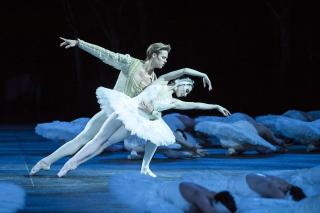 Премьер Королевского театра исполнит в Киеве «Лебединое озеро»