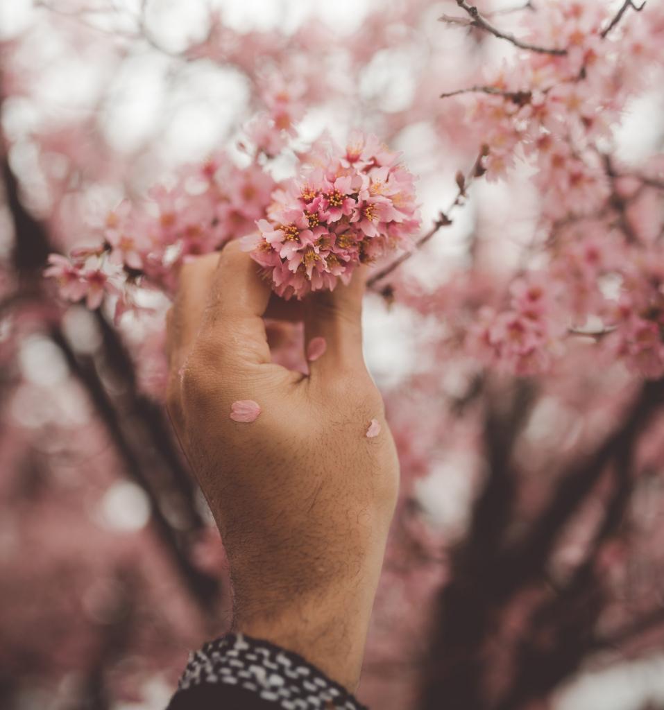 6 способов спастись от сезонной аллергии-Фото 2