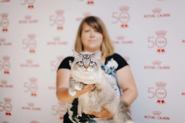 Royal Canin Cup 2018: как прошла выставка кошек в Одессе
