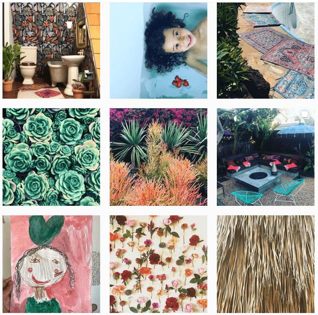 Лучшие «растительные» аккаунты в Instagram-Фото 10
