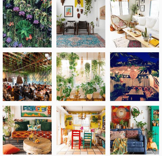 Лучшие «растительные» аккаунты в Instagram-Фото 2